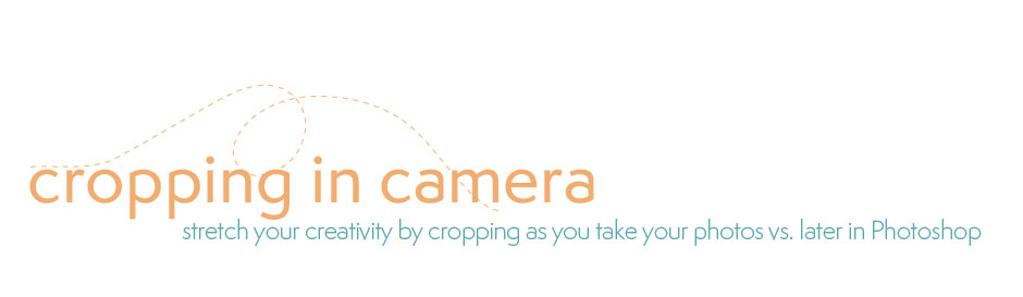 Crop In Camera Photography