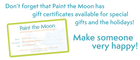 Paint the Moon Photoshop Actions Gift Cards Holidays