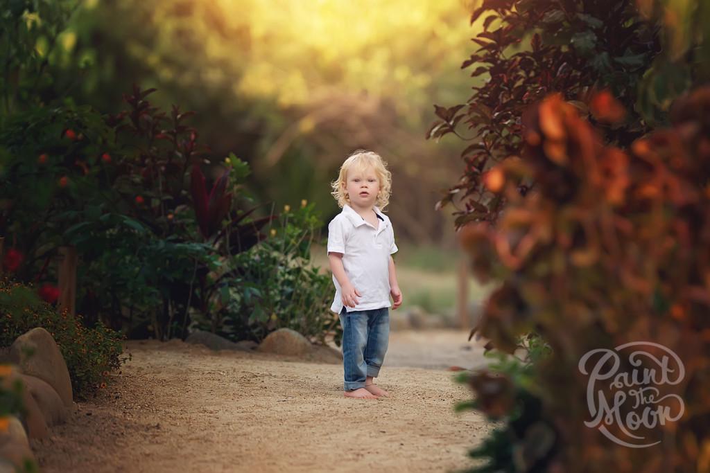 Photoshop Actions for Portrait Photography, Skies, Bokeh, Vivid